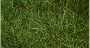 31002 DARK GREEN STATIC GRASS
