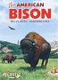 AMC-2002 AMERICAN BISON KIT 1:16 SCALE