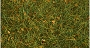 31003 6MM ALPINE GREEN GRASS