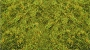 31011 LIGHT GREEN STATIC GRASS